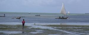 symposium-wiomsa-climate-change-indian-ocean-marumbi