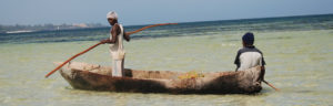 wiomsa-marine-resources-ocean-ecology-research-capacity-development